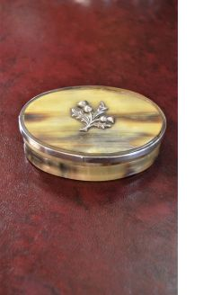 Scottish horn snuff box