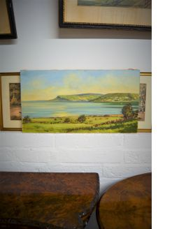 sam mclaron local irish artist ,oil on canvas