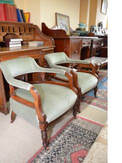 Pair of edwardian tub chairs