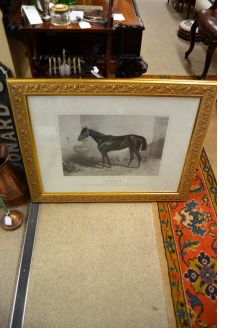 Gilt framed print